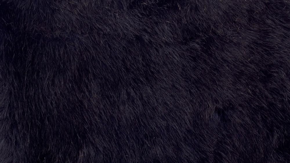 Carling Black 758