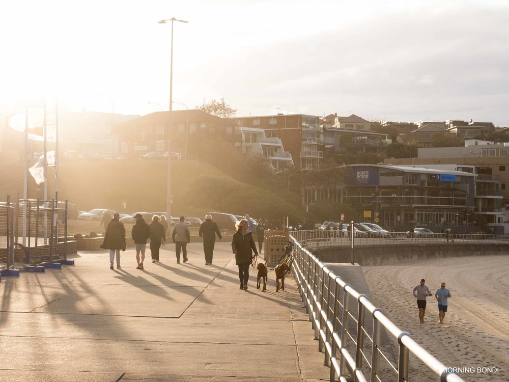 Golden North Bondi (BTW, Waverley Council when are you fixing these bloody showers?!)