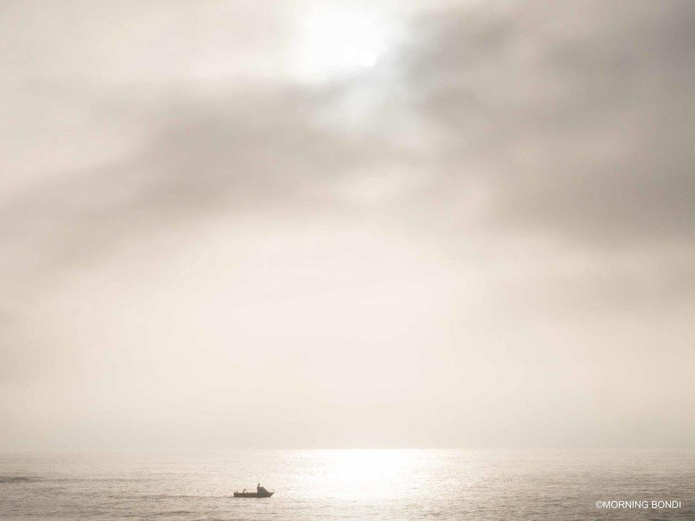 Shark net boat