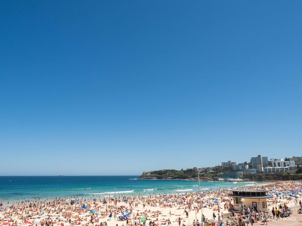 From Bondi Pavilion