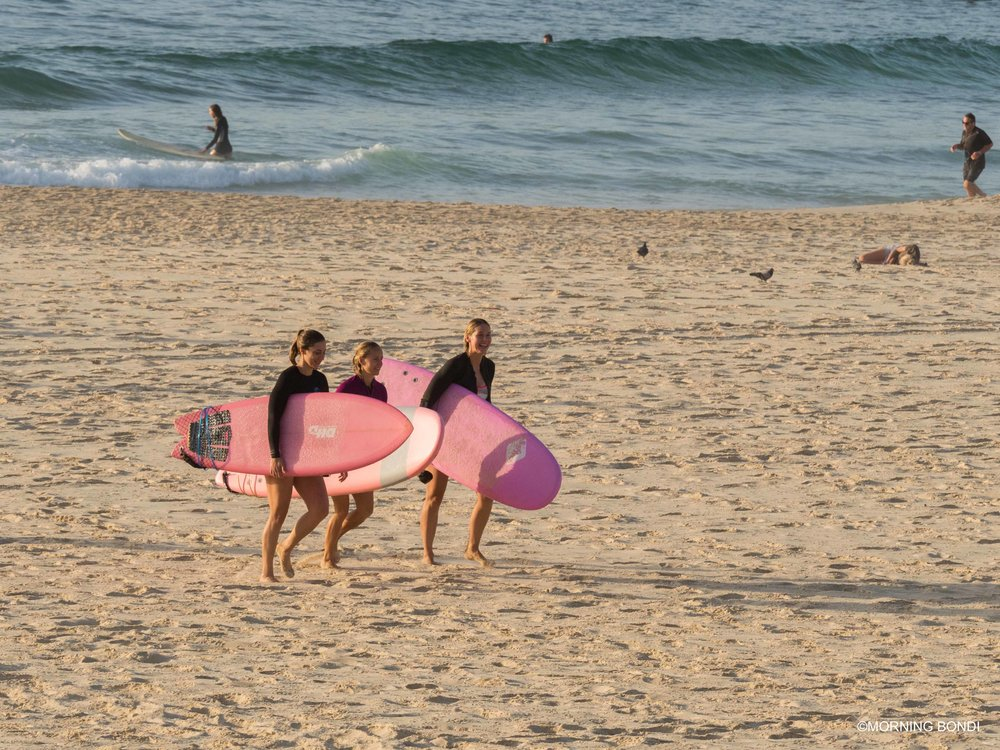 The Pink Power Surfers