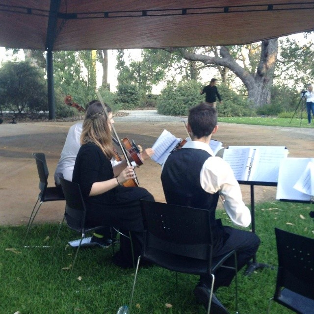 Ryan and Rosie Proposal 4 Hire Harpist String Quartet Wedding Music Perth www.RiversideEnsembles.com.au.jpg