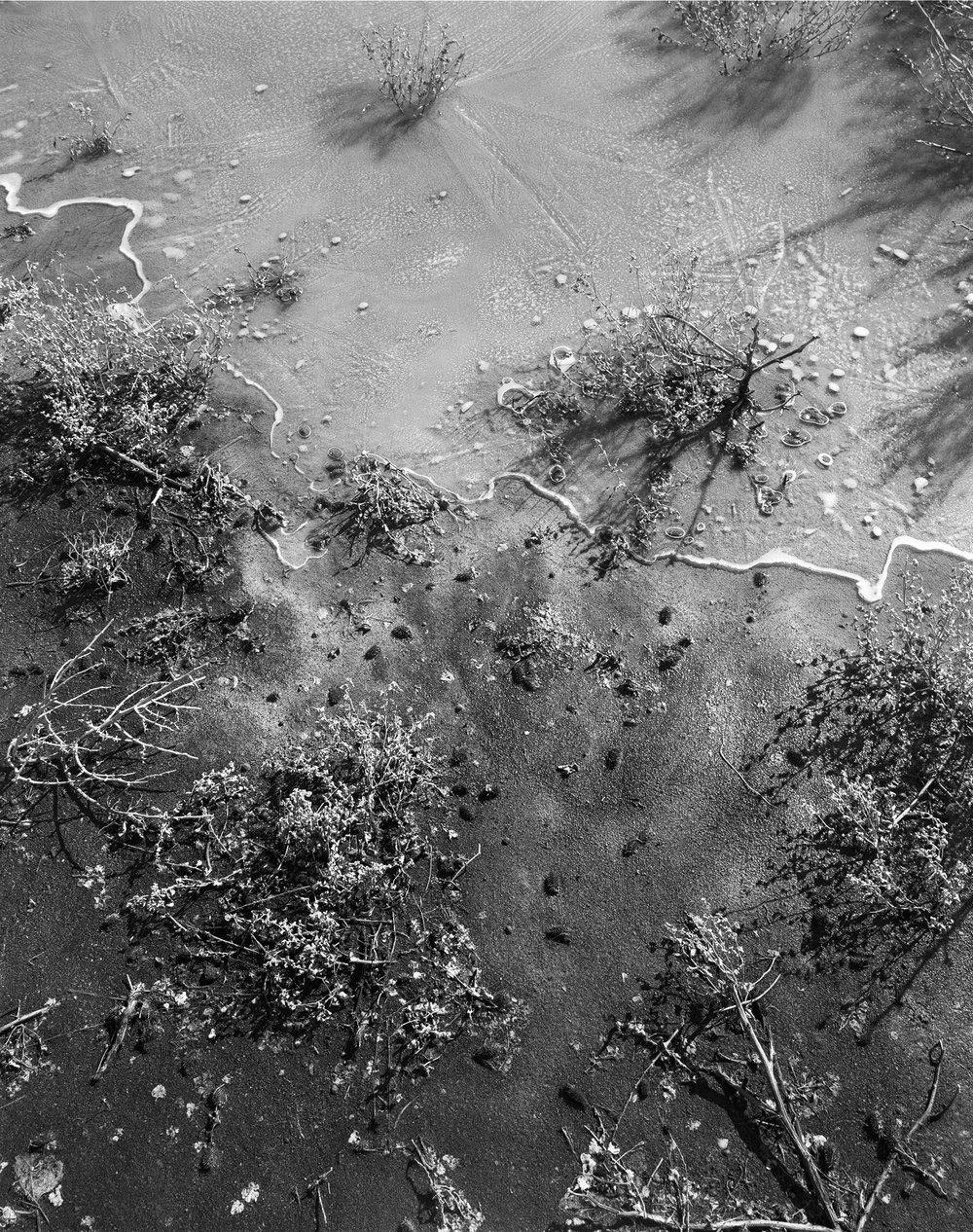 frozen-waters-edge.jpg