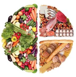 Healthy Plate Model