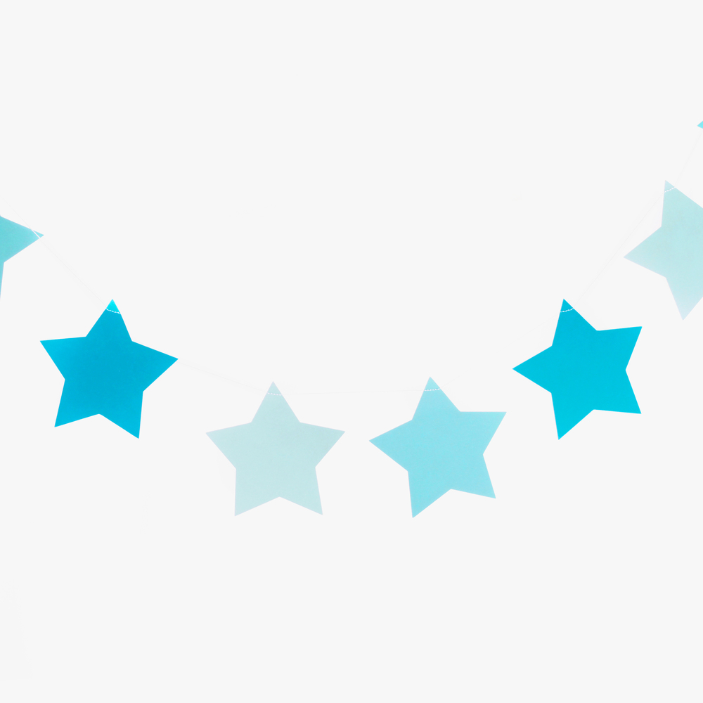 3m blue star garland