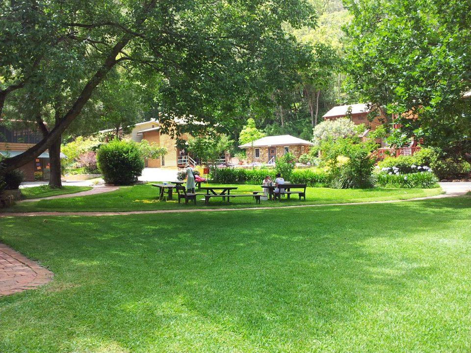 The Ashram gardens.