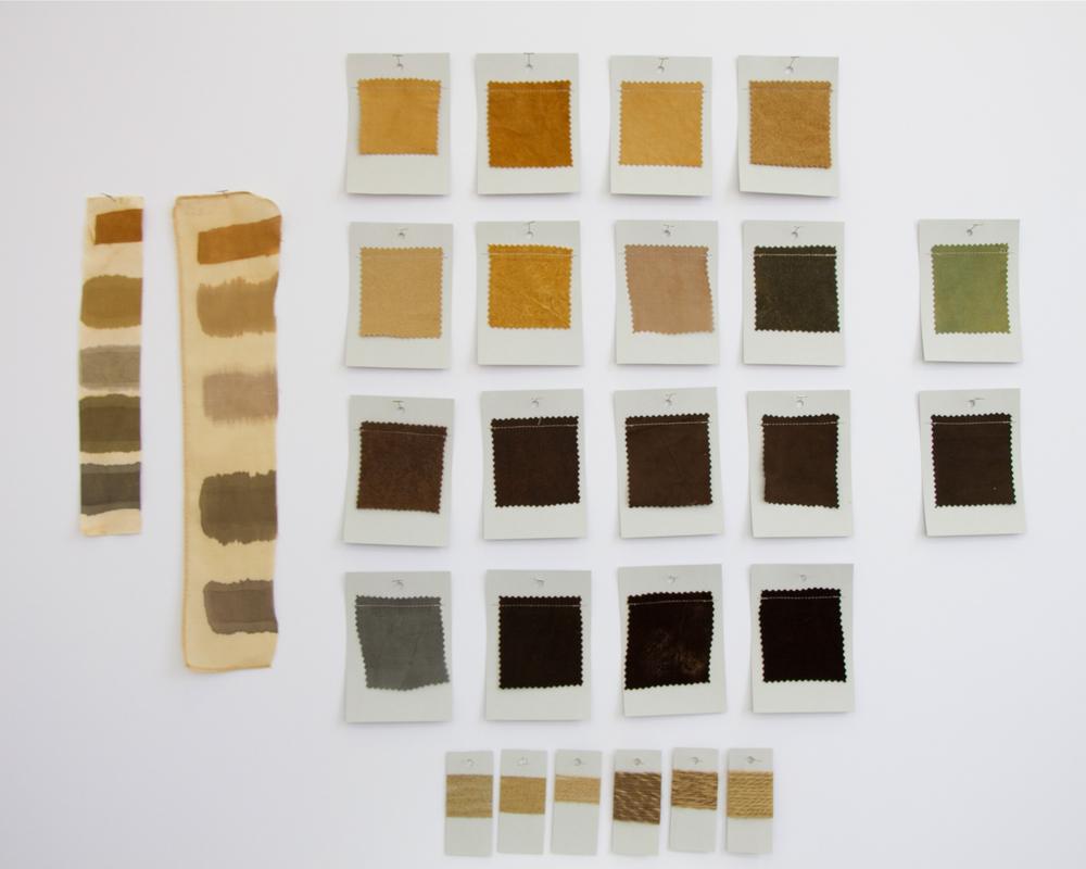 Chestnut Dye Card