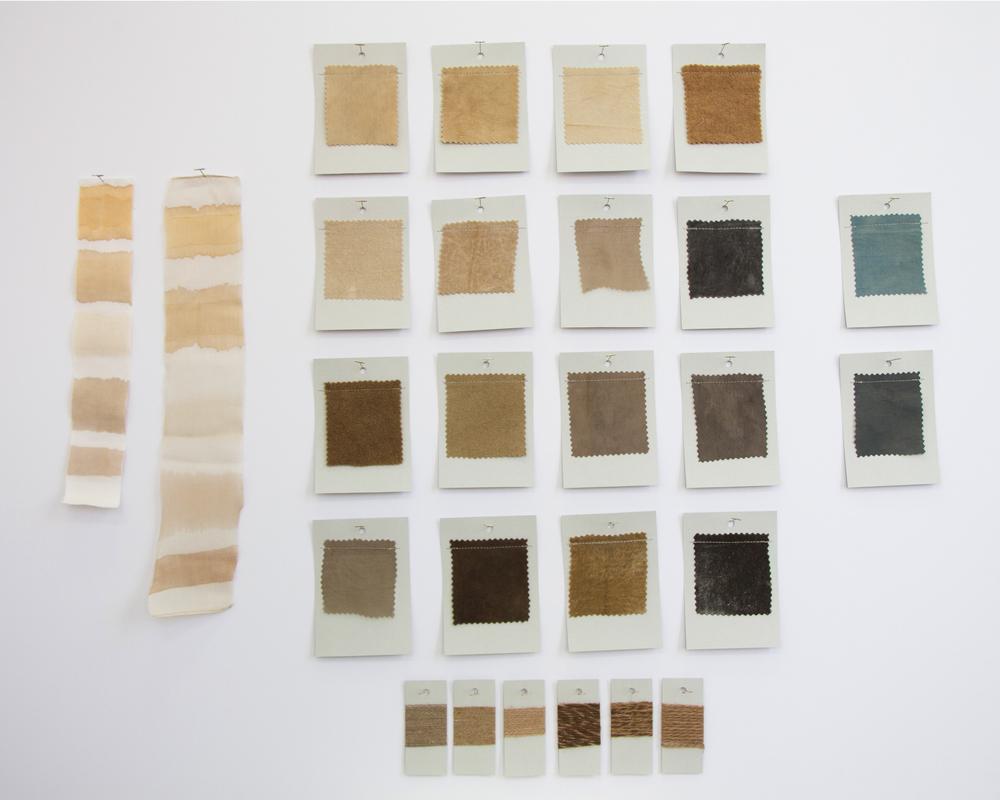 Black Walnut Dye Card