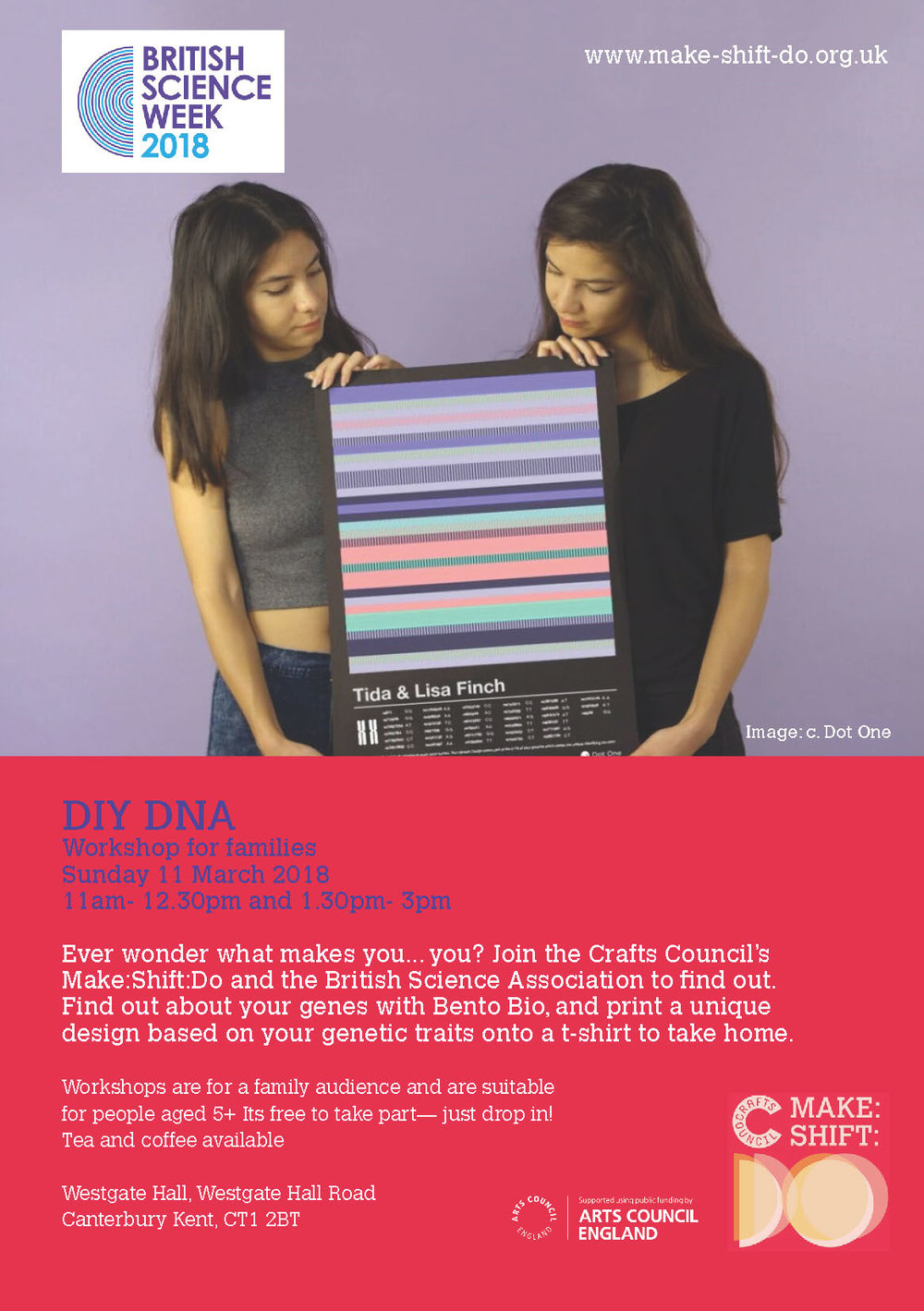 DIY DNA Flyer.jpg
