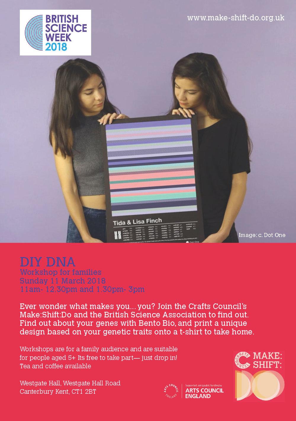 DIY DNA Flyer.jpg