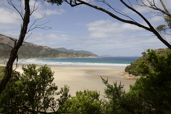 View From Tidal River, Wilson's Promontory
