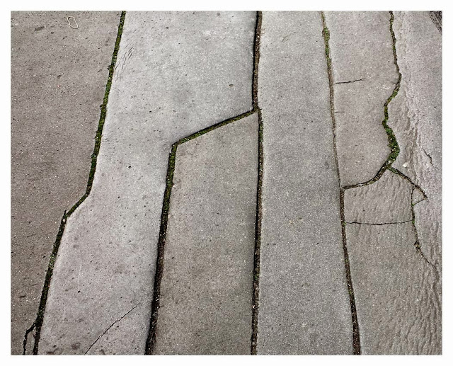 lines-web.jpg