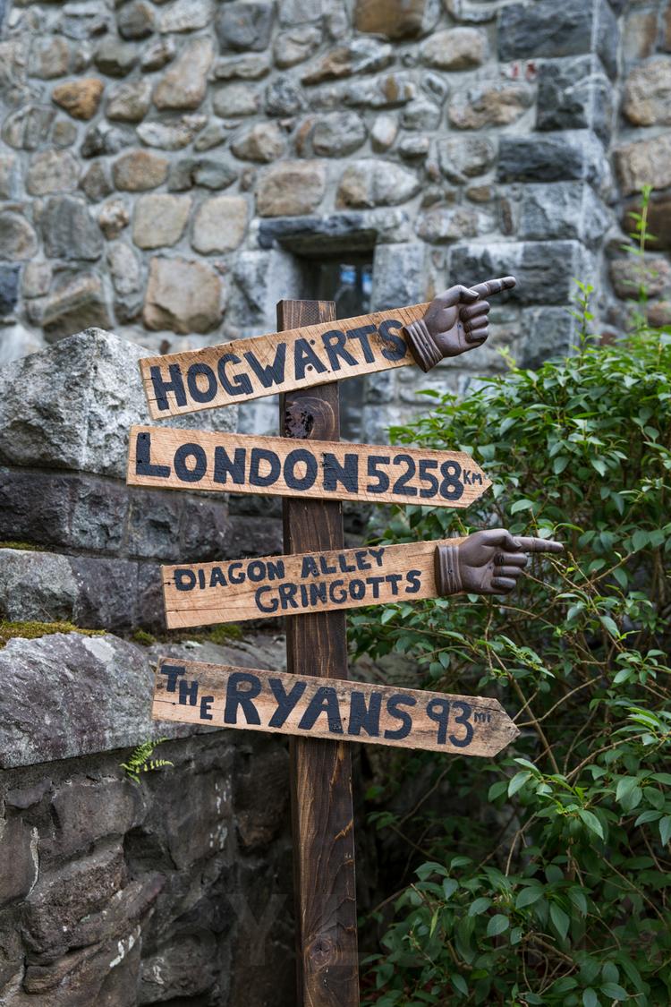 Harry-Potter-Wedding-2015_Ryans16.jpg
