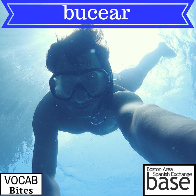 bucear.png