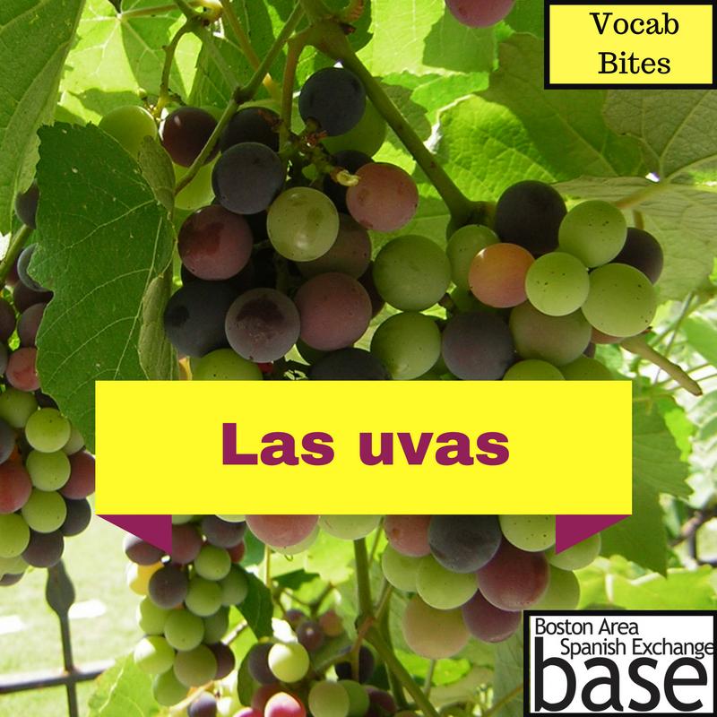 Las uvas-2.png