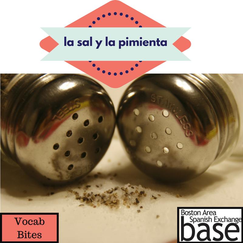 la sal y la pimienta-2.png