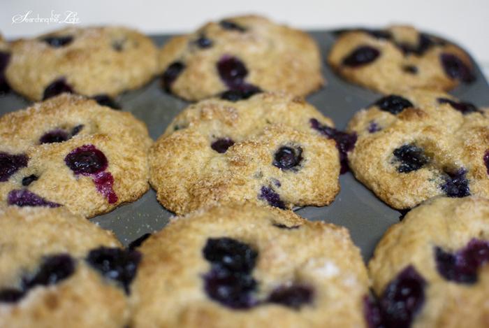 blueberrymuffinrecipe