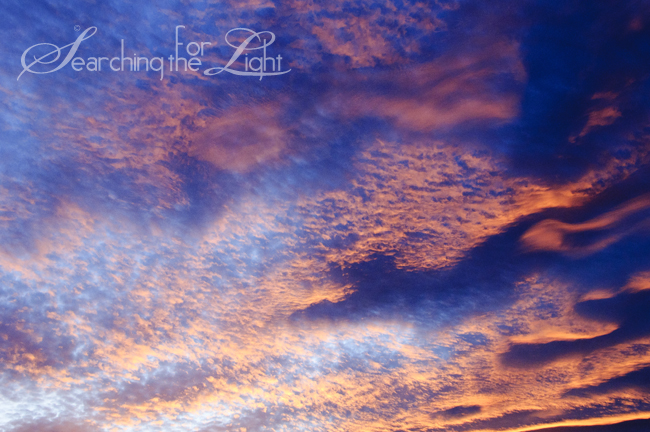 nov302012sunset_62 | Denver Photographers