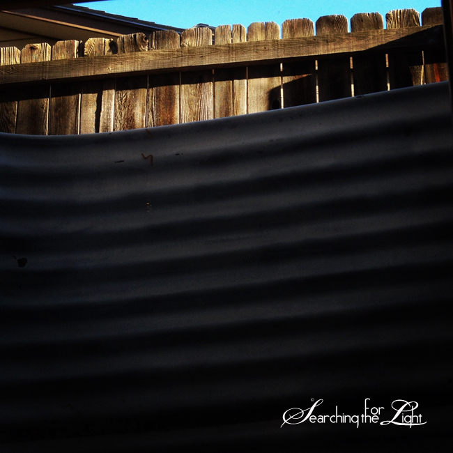 fence | Denver Wedding Photographer  | Denver Wedding Photographers