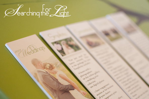 Branding Searching for the Light Photography {2013 Price Books} | Denver Vintage Wedding Photographer