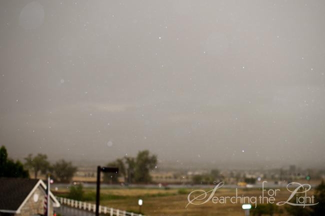 Rainy Sparkles, Rainbows...and fluffy bunnies..jk lol | Denver Photographer