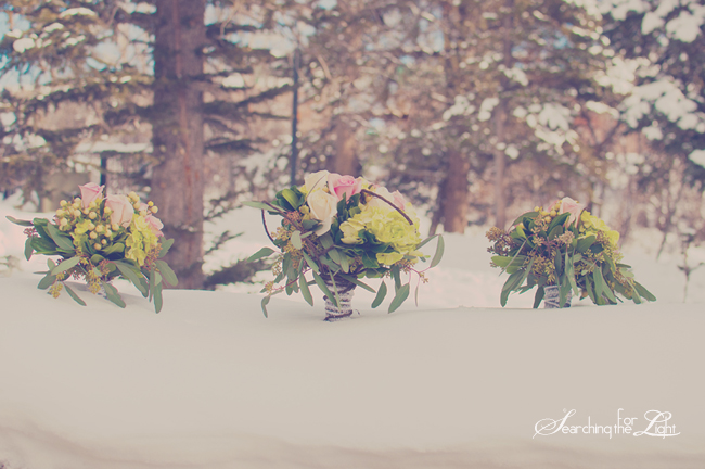 Winter Mountain Wedding {Anne & Jason | The Details} | Denver Wedding Photographer | Denver Vintage Wedding Photographer; silverthorn pavilion wedding