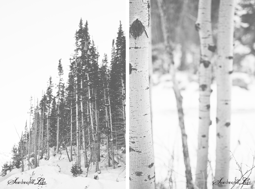 Boulder Canyon {A Wintery Drive} | Denver Wedding Photographer | Denver Vintage Wedding Photography