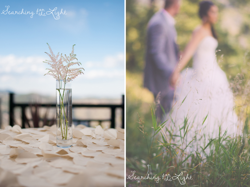 denver wedding photographer mount vernon wedding with we tie the knot event planning
