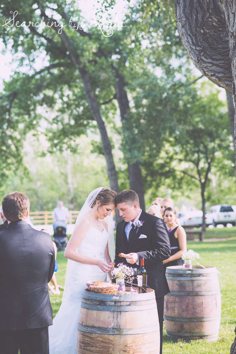 Colorado Wedding in Golden, a Park wedding by denver wedding photographer