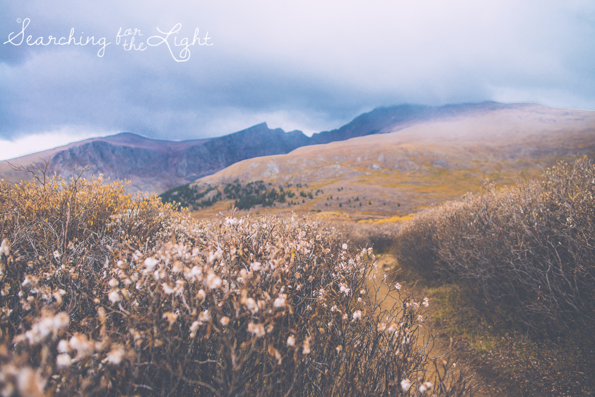 Mount Bierstadt in September on a rainy day by Denver wedding photographer