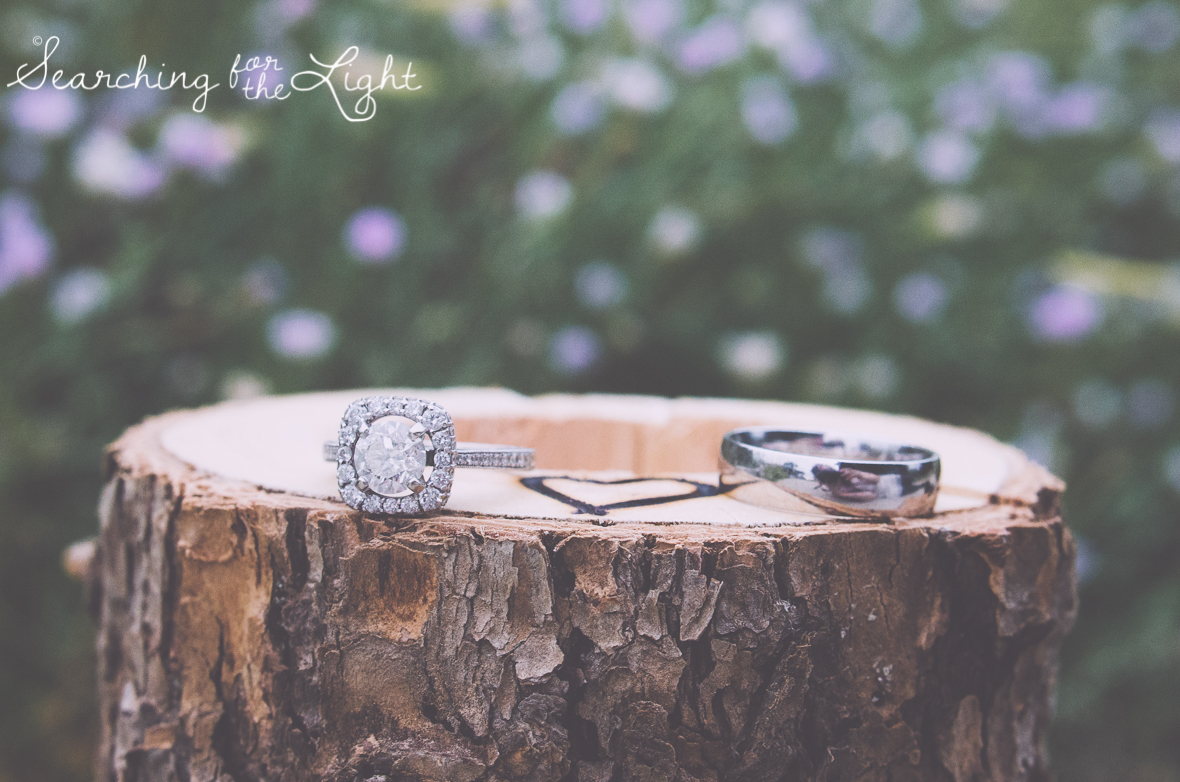 wedding rings photo denver botanical garden at chatfield, colorado wedding photographer photos