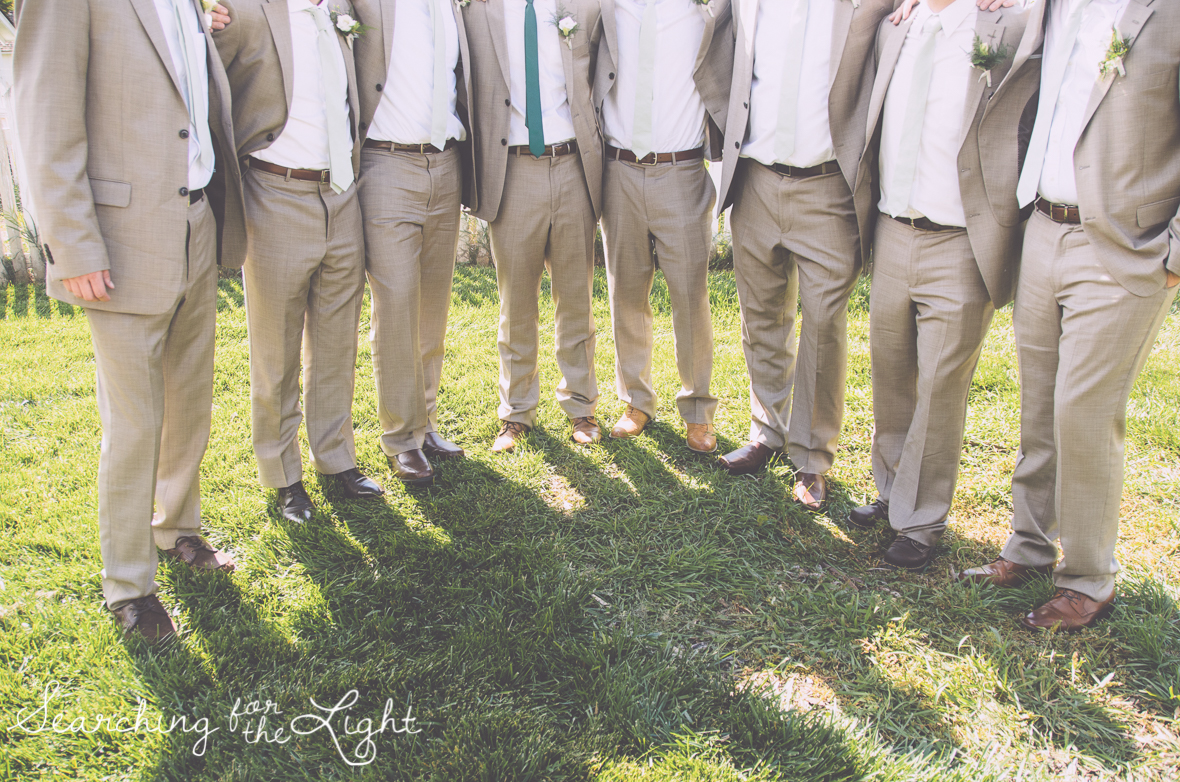 groomsmen photo denver botanical garden at chatfield, colorado wedding photographer photos
