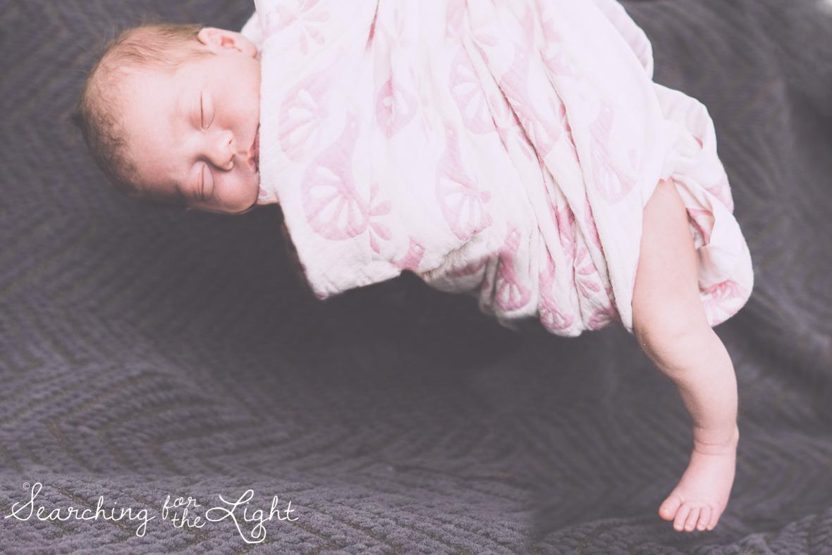 Denver newborn photographer, Newborn hanging