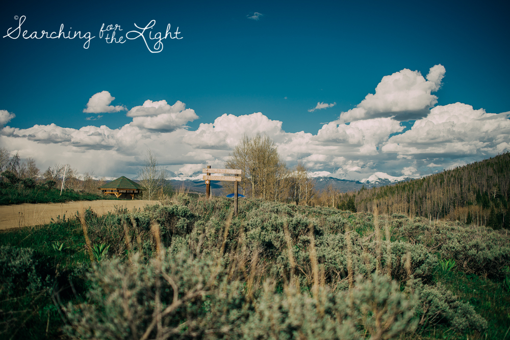 24_snow_mountain_ranch_wedding_colorado_wedding_photographer_kara&jason_0575_vintage_film.jpg