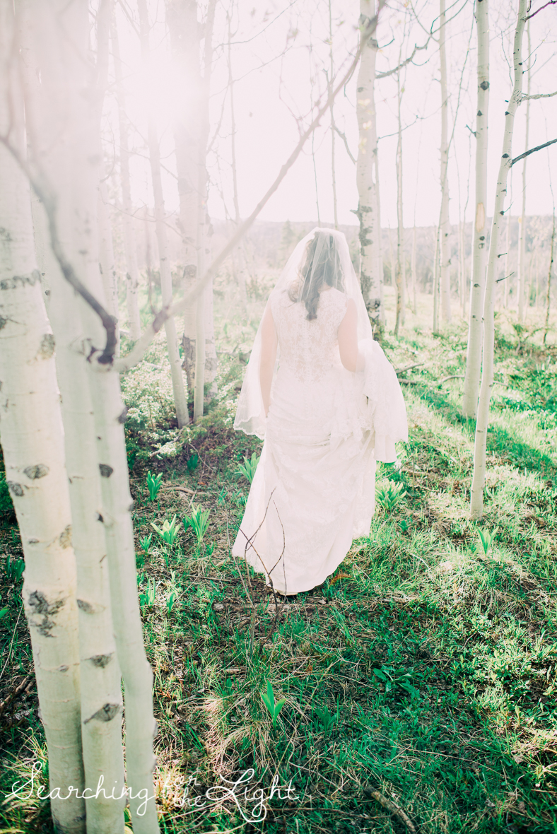 39_snow_mountain_ranch_wedding_colorado_wedding_photographer_kara&jason_1138_vintage_film.jpg