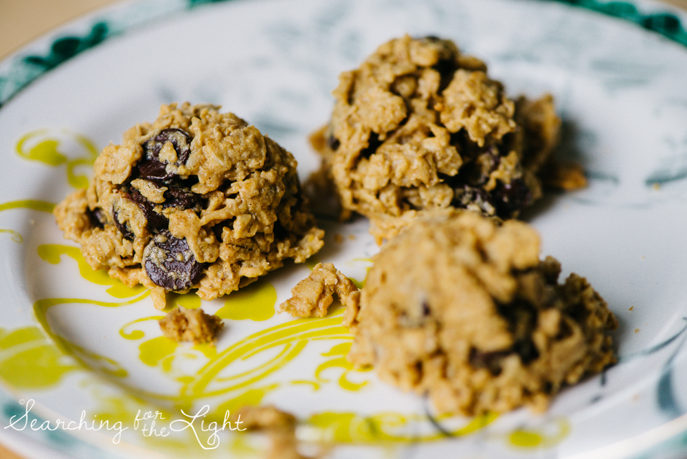 Gluten Sugar-Free Oatmeal Chocolate Chip Cookies {Recipe ...