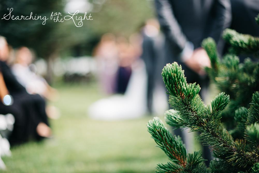 041evergreen_barn_wedding_photos_mountain_wedding_photographer_courtney&kirby_1677041.jpg