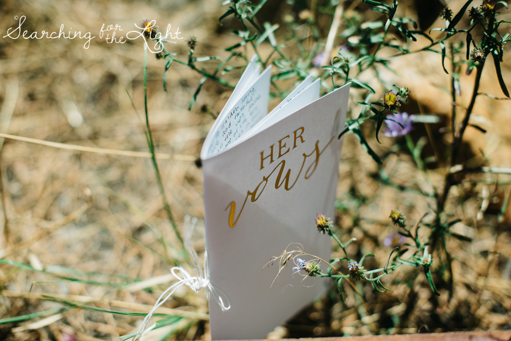 052mount_princeton_mountain_wedding_photographer_jessica&geoff0095.jpg