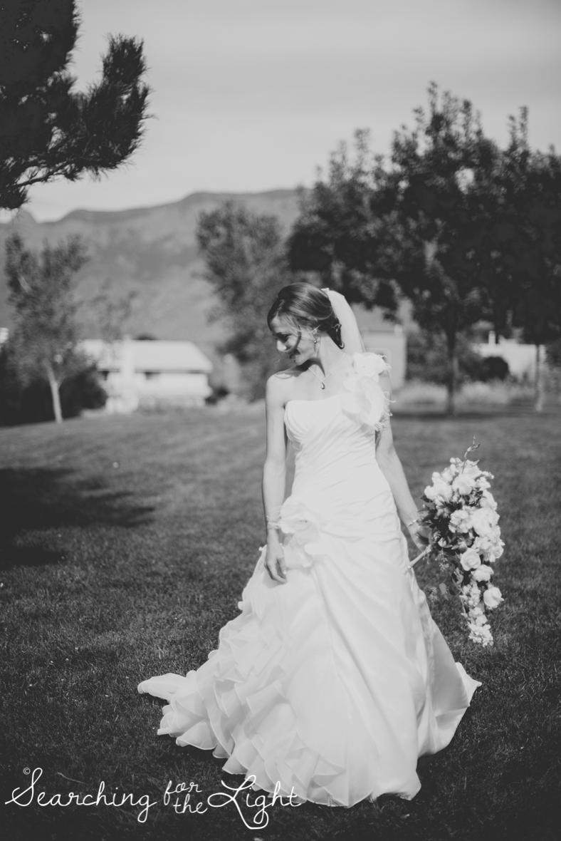 015mountain_wedding_photographer_mandy&josh_0302_bw.jpg