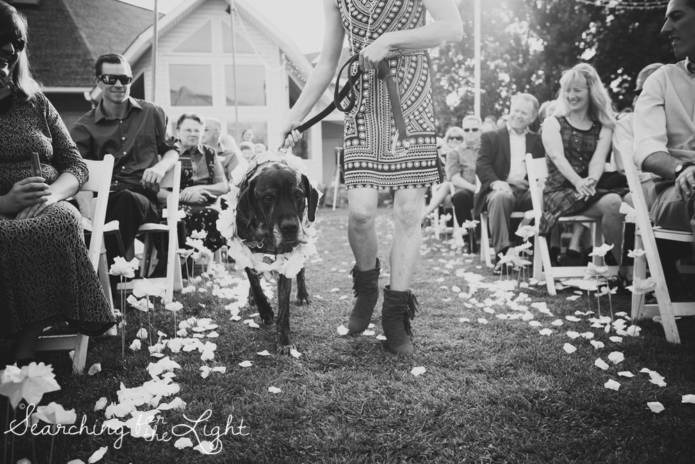 035mountain_wedding_photographer_mandy&josh_1186_bw.jpg