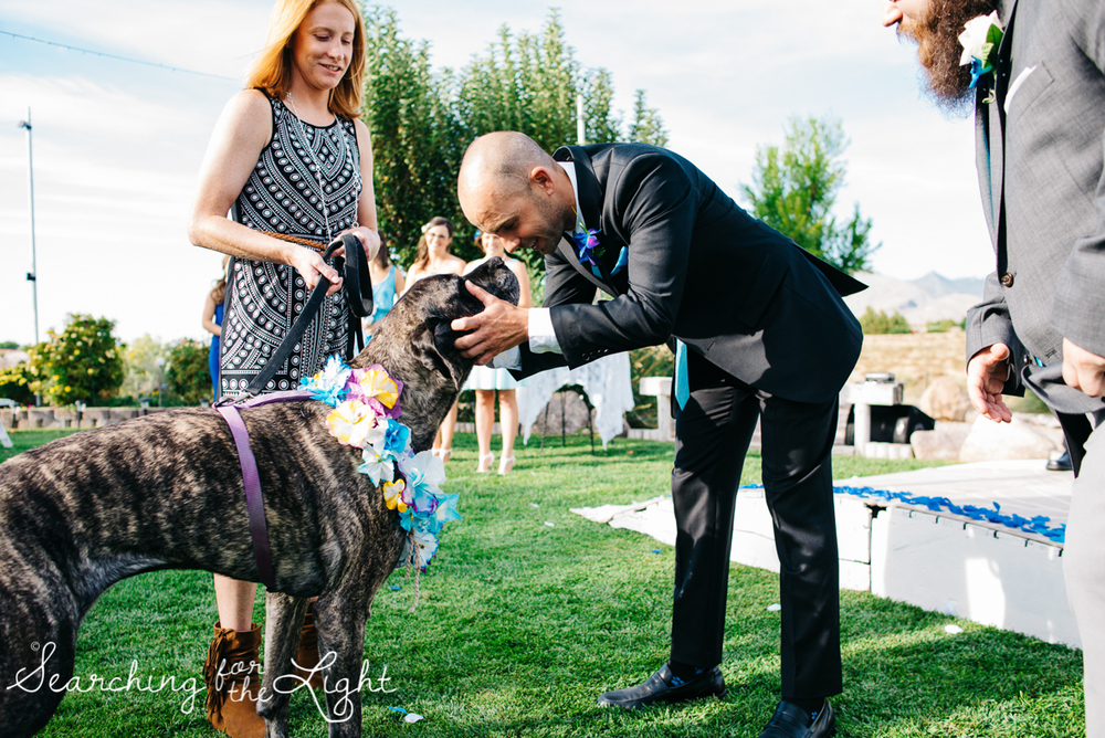 036mountain_wedding_photographer_mandy&josh_1190.jpg