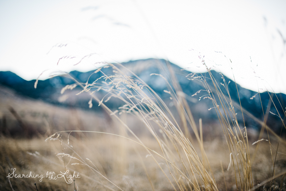 15mountain_wedding_photographer_boulder_engagement_photos_katie&ben_482.jpg