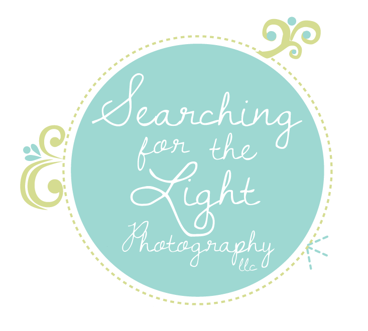 Searching for the Light Photography
