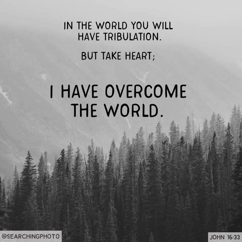 Scripture Art | Scripture Photos | Jesus Has Overcome the World | John 16:33
