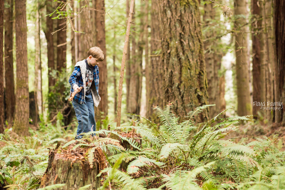 5 best things to do outside with your kids (and the family dog!) this summer | Placerville Everyday Photographer
