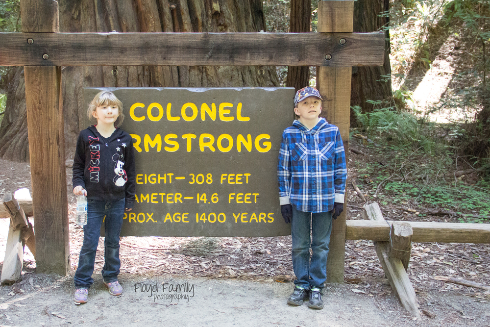Colonel Armstrong Tree with kids | Placerville-Children-Photographer