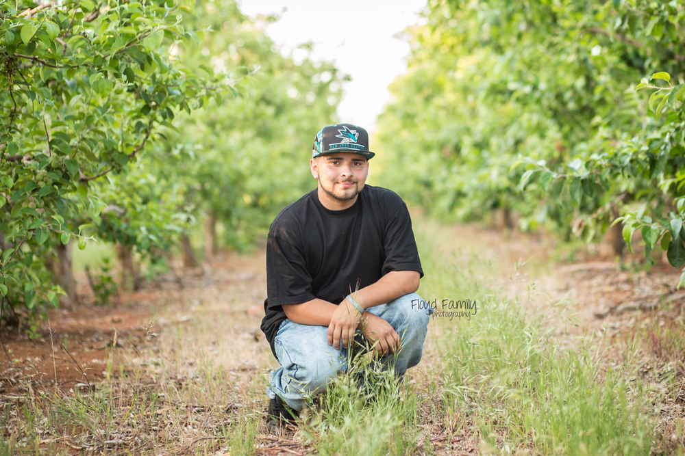 senior boy squatting in a row of apples trees | Placerville-Children-Photographer