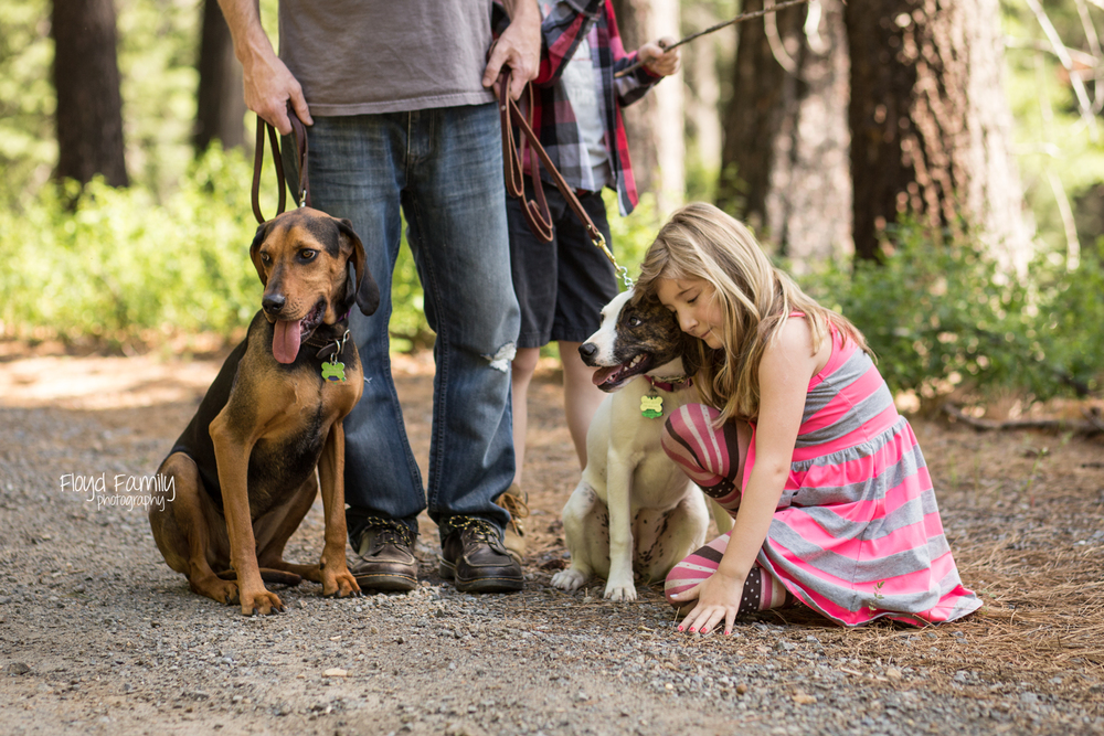 family on trail with dogs | Placerville-Family-Photos