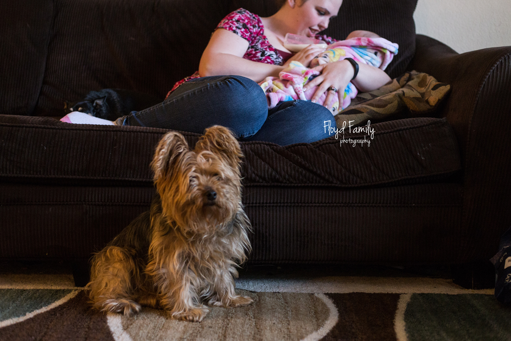 mom holding baby while laying on couch and feeding with a bottle. Dog looking on while sitting on floor