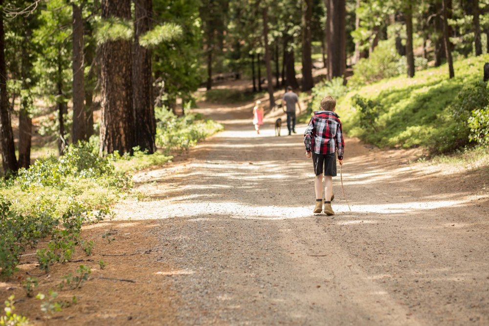 Family hiking on a lonely road on dirt